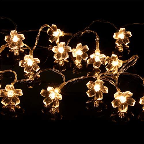 (UNIQUE-F Lichterkette 10LED Pflaumenbatterie Box Fee Lampe Weihnachten Täglich Notwendigkeiten Schlafzimmer Garten Immer Helle Energieklasse 3 Stücke)