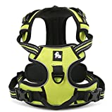 Hunde-/Trainingsgeschirr von Rashen, verstellbar, weich gepolstertes, hochwertiges Nylon, weiches Meshmaterial, 3M-Reflektornähte, Hundegeschirr-Weste zum Trainieren oder Spazierengehen, kein Zug-Hundegeschirr, mit Griff