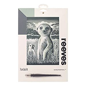 Reeves - Creatividad - Tarjeta de Raspar - Medio, plata - Suricata