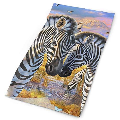 Wfispiy Headbands Zebra Headwear Bandana Sweatband Gaiter Head Wrap Mask Neck Outdoor Scarf