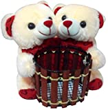Best Couples Gifts - Saugat Traders Couple Teddy Soft Toy Pen St Review