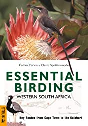 Essential Birding Western South Africa: Key Routes from Cape Town to the Kalahari