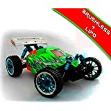HSP - Coche RC Troian Buggy 1/16 Brushless 2,4Ghz - HSP94185TOP-04