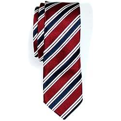 Retreez Corbata de microfibra con fina estampado a rayas elegante para hombres Rojo burdeos y azul marino