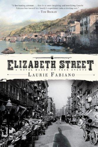 Elizabeth Street by Fabiano, Laurie (2011) Paperback