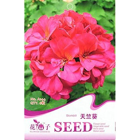 1 Original Pack, 6 semi / Pack, geranio zonale Red Velvet Series Mix Semi # A144 - Red Fioritura Alberi