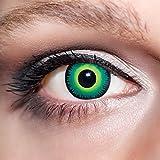 KwikSibs farbige grüne Kontaktlinsen Werwolfsaugen 1 Paar (= 2 Linsen) weiche Funlinsen inklusive Behälter (Stärke / Dioptrie: 0 (ohne))