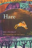 Hare (Encounters in the Wild)
