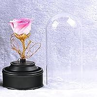 Regalos del día de lkklily-valentine, eterna flores, música, música, emocional Regalos y decoración para el hogar