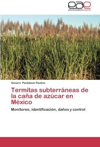 termitas-subterraneas-de-la-cana-de-azucar-en-mexico