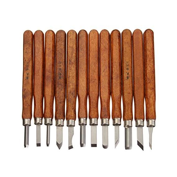 Generic 12Pcs Wood Carving Chisel Tool Set Woodworking Professional Gouges