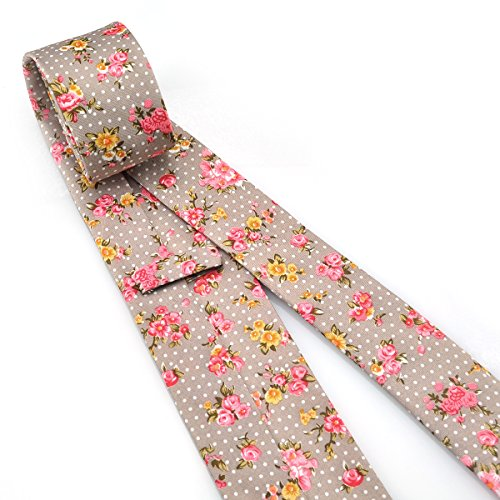PenSee - Cravate - Homme Oyster Gray,White Dots,Multicolor Rose