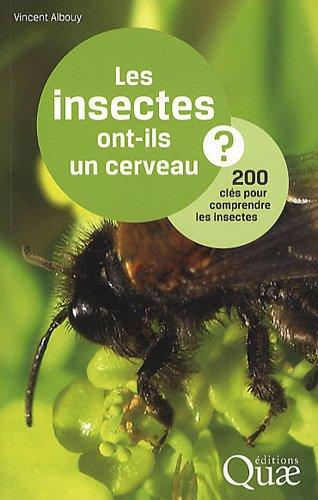 Les insectes ont-ils un cerveau ? : 200 clés pour comprendre les insectes par Vincent Albouy