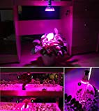 Yeesn Highest Efficient Hydroponic LED Grow Light, E27 12W Plant Grow Lights 12 LED (3 blue & 9 red)