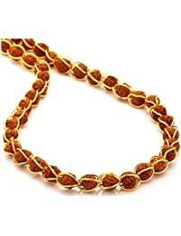 RUDRA DIVINE Gold Plated Wire Rudraksha Beads Brass Mala with Original 5 Mukhi Rudraksha Mala \ Chain Necklace