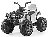 Rocket Kids Dune Raptor Extreme 12v Electric / Battery Ride On Utility Quad