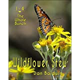 Wildflower Stew: The Whole Bunch (English Edition)