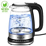 Electric Glass Kettle - 1.7L Stainless Steel Kettle in Double Wall with Temperature
