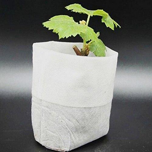 SDYDAY Lot de 100 Sacs de Plantation Non tissés dégradables pour semis de Jardin 9,5 x 9,9 cm 20×22cm Voir Image