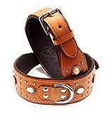 Hundehalsband aus Leder hoher Qualität, Halsband Neu LDC-406, Halsband Länge:ca. 72 cm Halsumfang 53-63 cm