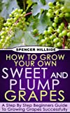 How To Grow Your Own Sweet and Plump Grapes