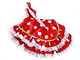 La Señorita Vestido Ropa Muñeca Flamenco Barbie España Disfraz rojo puntos blanco
