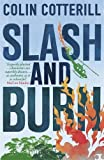 Slash and Burn: A Dr Siri Murder Mystery (Dr Siri Paiboun Mystery 8)