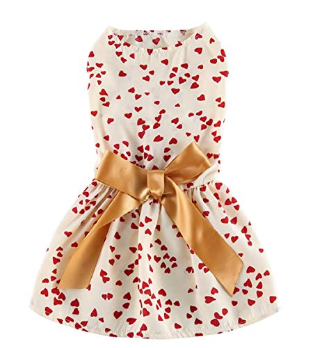 Frühling Kostüm - Vaycally Modische Haustier Rock Kleid Liebe