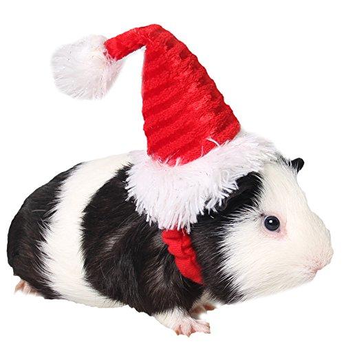ZuckerTi Hut Mütze für Feiertag Halloween Weihnachts Weihnachten Geburtstag Kostüm...