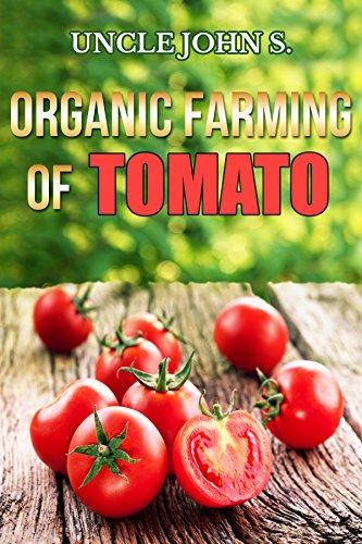 organic-farming-of-tomato-easy-tips-for-organic-home-garden