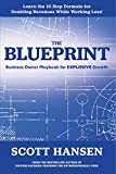 The Blueprint: Business Owner Playbook For Explosive Growth (English Edition)