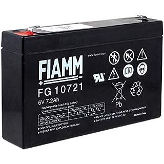 akku-net FIAMM Bleiakku FG10721, 6V, Lead-Acid