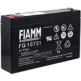 FIAMM FG10721 Bleiakku Akku 6V, 7200mAh/43Wh, Lead-Acid, Schwarz, Bulk