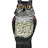 NF&E Realistic Owl Decoy Weed Pest Control Garden Bird Scarer Scarecrow w/Rotating Head - Best Reviews Guide