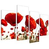 Wallfillers Canvas 4056 Wandbild mit Blumendruck, rote Mohnblumen, extragroß