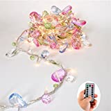 Echo Sari Indoor House Bedroom LED Light Chain, Bohemia Style String with Jewel Coloured Gems LED 8Mode Remote Timer 30Warm White LED Lights for any little girl fairy christmas lights battery [Updated Version]