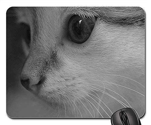 Gaming-Mauspads, Mauspad, Cat Animal Love Pet Care glücklich zusammen Kätzchen