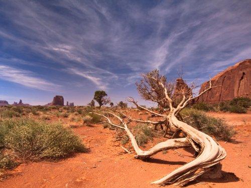 Fototapete Wüstenlandschaft USA KT483 Größe: 350x260cm Sand Sonne Landschaft