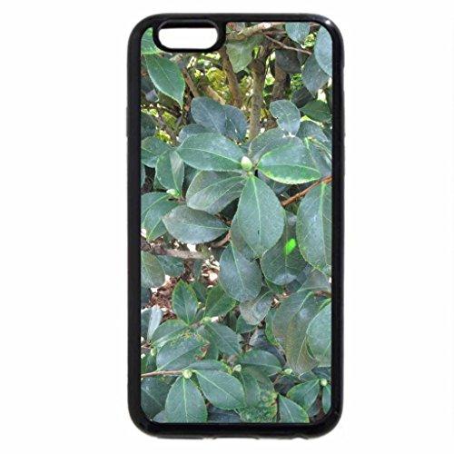 iPhone 3S/iPhone 6Coque (Noir) Parfait pour un jour à jardin d'Edmonton 25