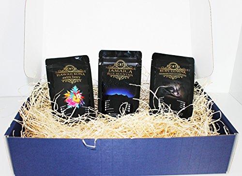 edles und hochwertiges Geschenk Set Kaffee - Rarität Katzenkaffe Kopi Luwak (von freilebenden Tieren) , Jamaika , Hawai Kona ganze Bohne zum verschenken frisch geröstet