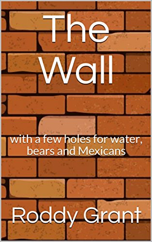 the-wall-with-a-few-holes-for-water-bears-and-mexicans