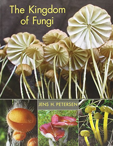 The Kingdom of Fungi por Jens H. Petersen
