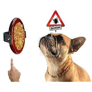 Amberdog Striegli Amber Massage Brush for Pets