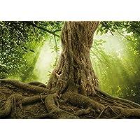 Suchergebnis Auf Amazonde Für Wurzel Baum Küche Haushalt Wohnen