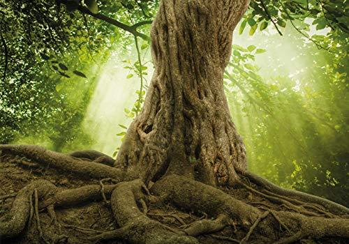 PICSonPAPER Hochwertiges Poster Magischer Baum Wurzeln, 100 cm breit x 70 cm hoch, Dekoration,...