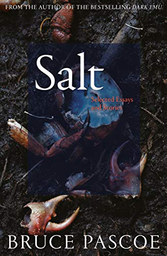 Salt: Selected Essays and Stories (English Edition)