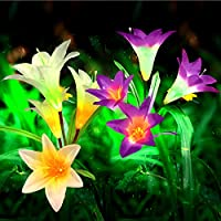 Mr.Twinklelight® Solar Lights Outdoor - 2 Pack Solar Powered Lights with 8 Lily Flower, Multi-Color Changing LED Solar Stake Lights for Garden/Patio/Backyard (Purple and White)