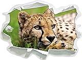 Cheetah in formato adesivo erba, carta da parati 3D: 92x67 cm decorazione della parete 3D Wall Stickers parete decalcomanie