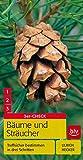 Bäume und Sträucher: Treffsicher bestimmen in drei Schritten