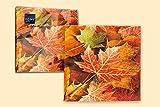 HELA Servietten 20er Pack Motiv Herbstlaub